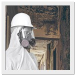 Mold Worker